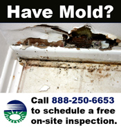 Call 888-250-6653 for a free MA on-site mold inspection.