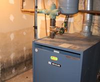 basement mold tips