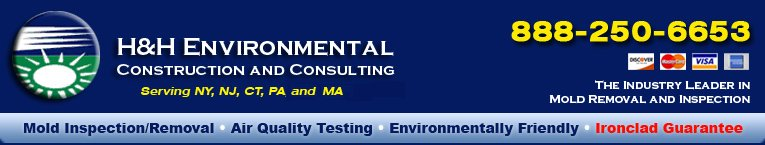 Mold Removal and Remediation | H&H Environmental Construction and Consulting
