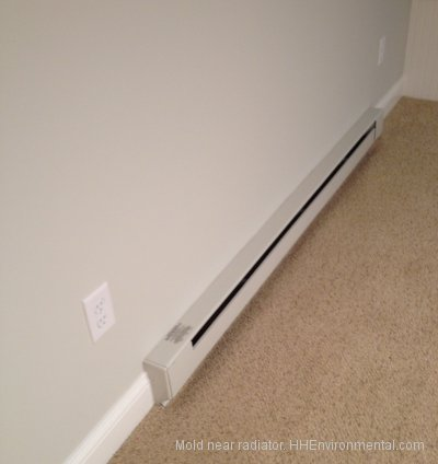 mold near radiator